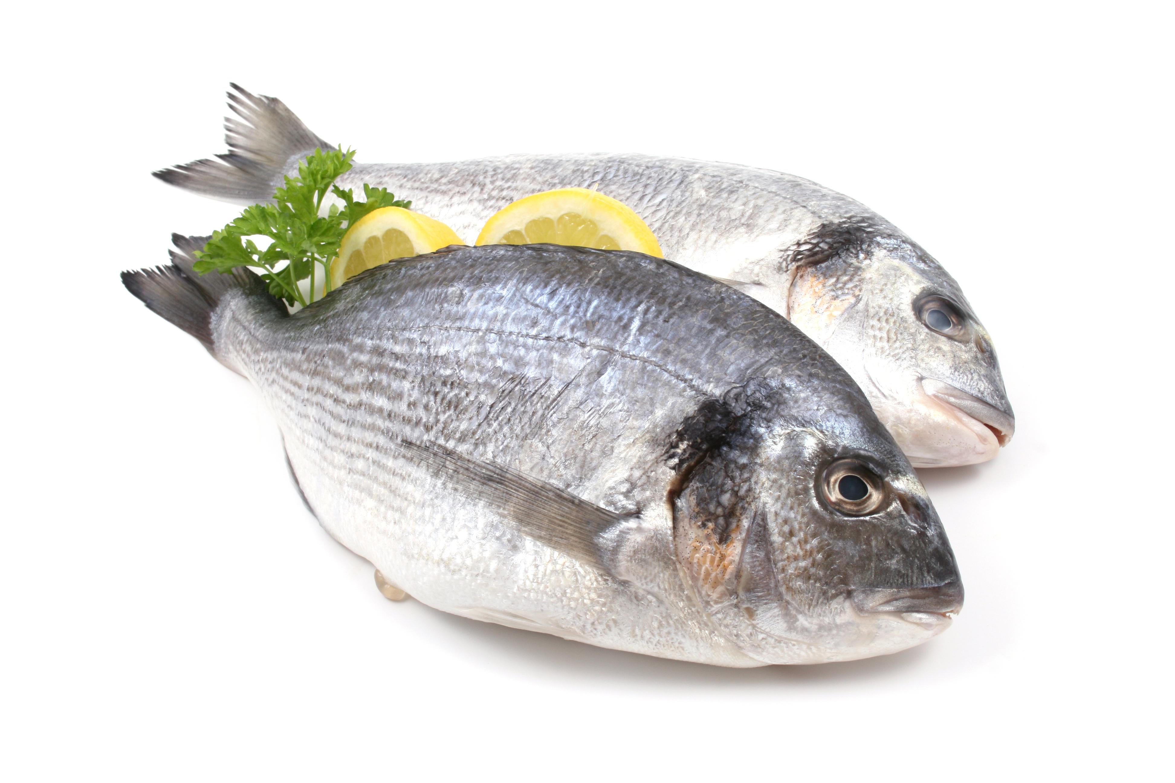 Liste histaminhaltiger fisch for Fisch bilder