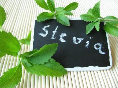 stevia zuckerersatz bei diabetes und fruchtzuckerunvertr glichkeit. Black Bedroom Furniture Sets. Home Design Ideas