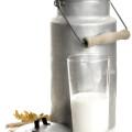 Laktoseintoleranz, Bezeichnungen Laktose
