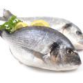 Fisch, Histaminintoleranz
