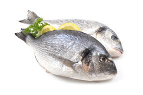 close-ups of two dorada fish with lemon and parsley isolated on white