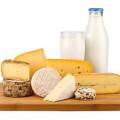 Käse und Milchprodukte