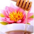 Honig - alternatives Süßungsmittel