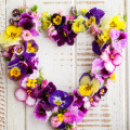 Blumen-Frühling-Muttertag